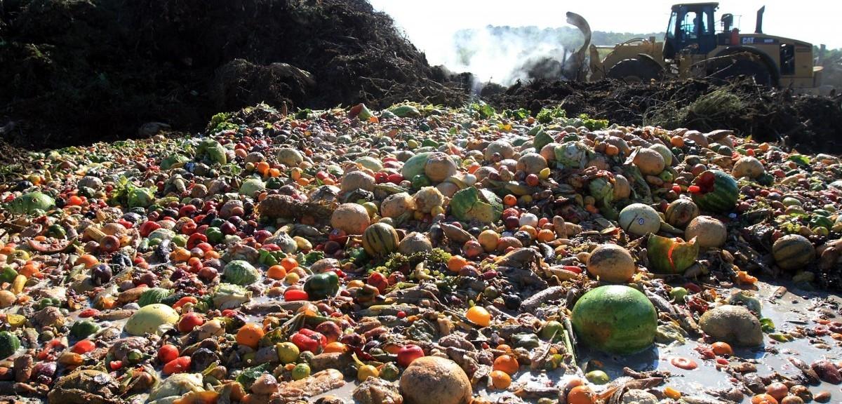 System marnotrastwa żywności