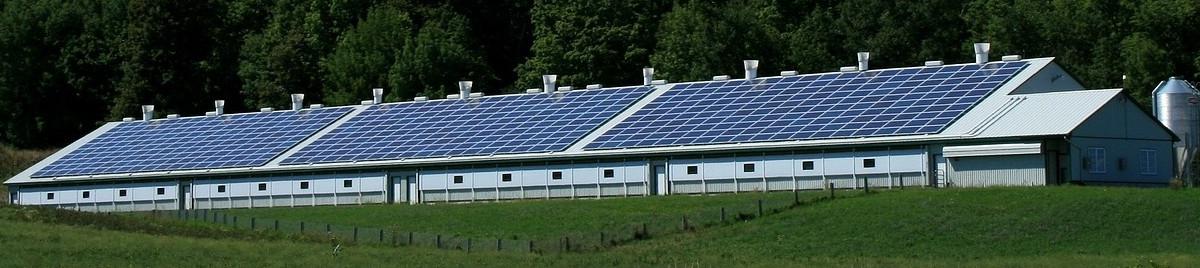 Solary w Ameryce: słoneczna rewolucja