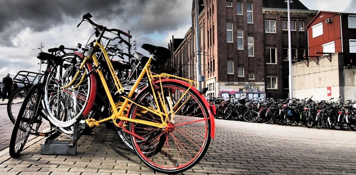 Rowery zastawiły Amsterdam