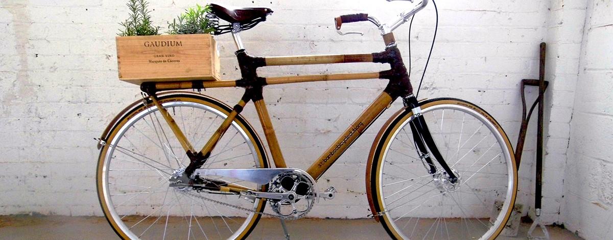 Zrób sobie bambusowy rower
