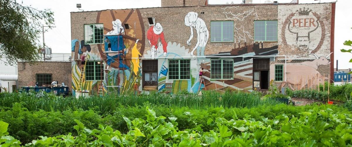 Miejska fabryka ekologicznej żywności