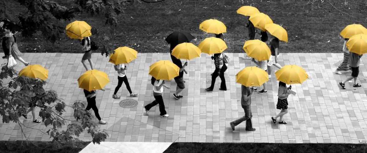 Po publicznych rowerach przyszedł czas na miejskie parasole