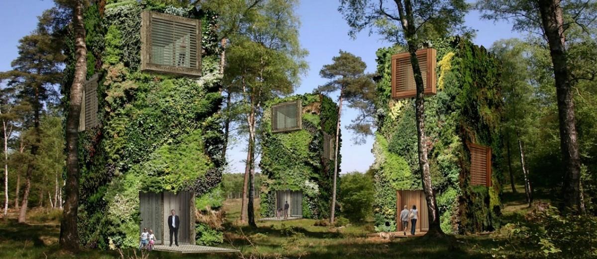 Leśnie ustronie dla ekologicznych mieszczan