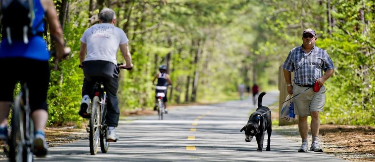 Wytyczanie rowerowych dróg to jedna z najtańszych metod wydłużania ludzkiego życia