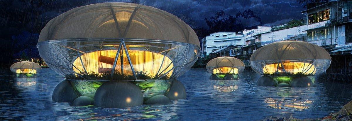 Flota pływających meduz oczyści rzeki, a przy okazji coś wyhoduje