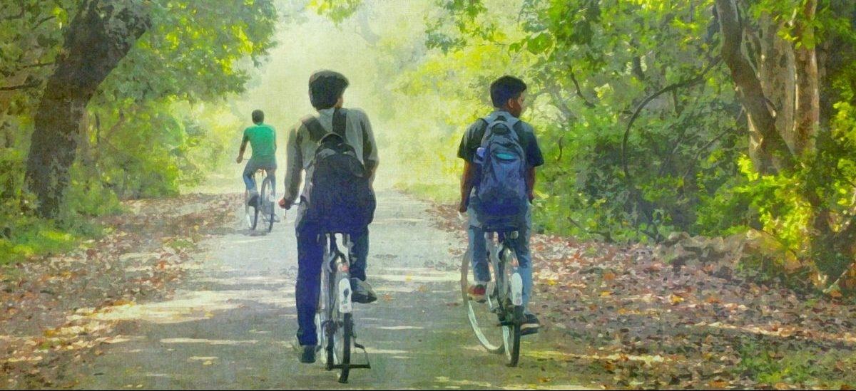 Myśliwi terroryzują rowerzystów. W Kołbaskowie zamykają im ścieżki