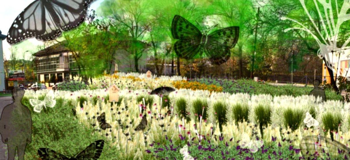 W Krakowie powstają parki kieszonkowe. Jeden dla motyli