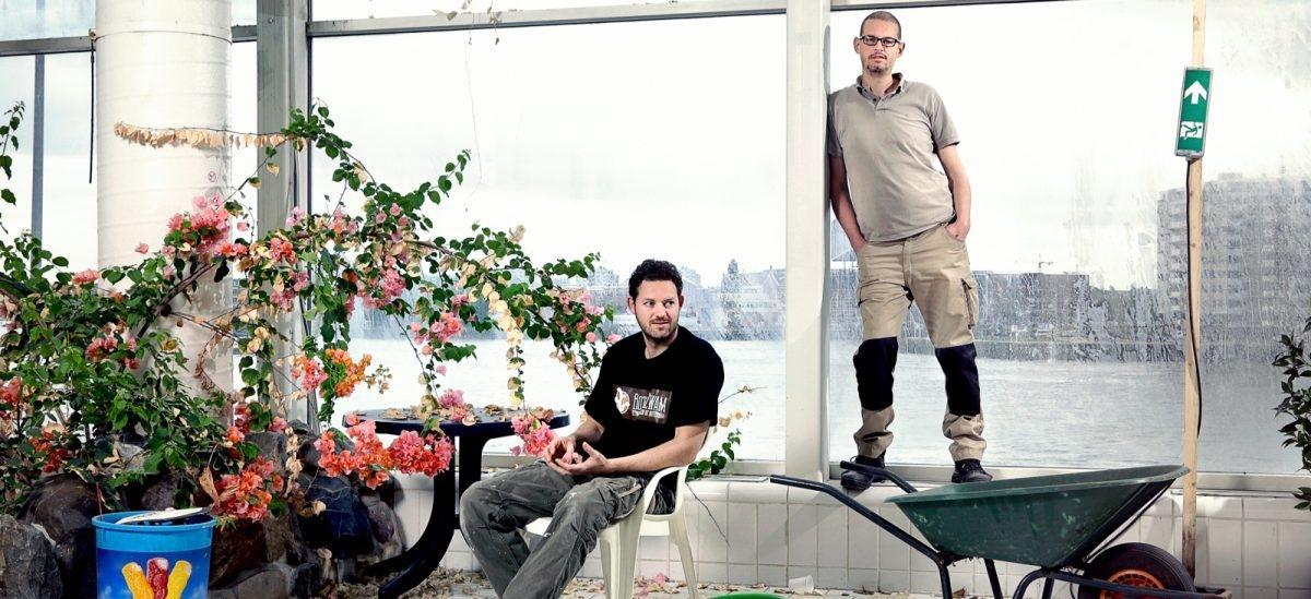 Plantacja grzybów rośnie na zaparzonej kawie