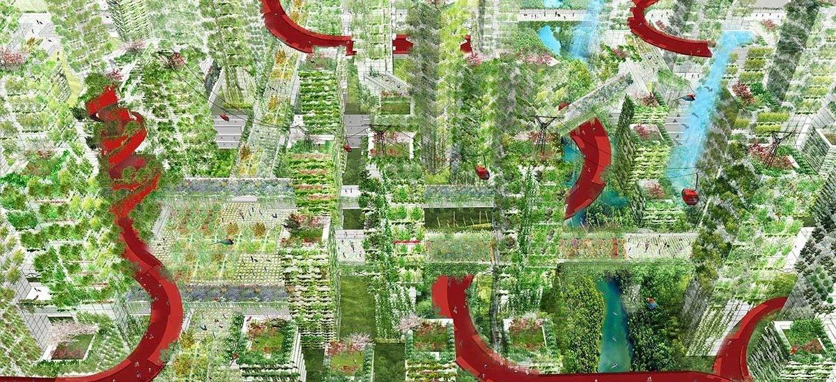 W Chinach wyrastają pierwsze Leśne Miasta