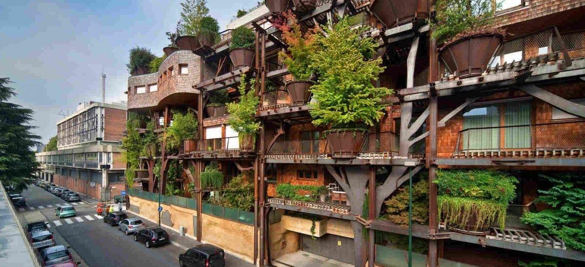 We Włoszech na domach rosną drzewa