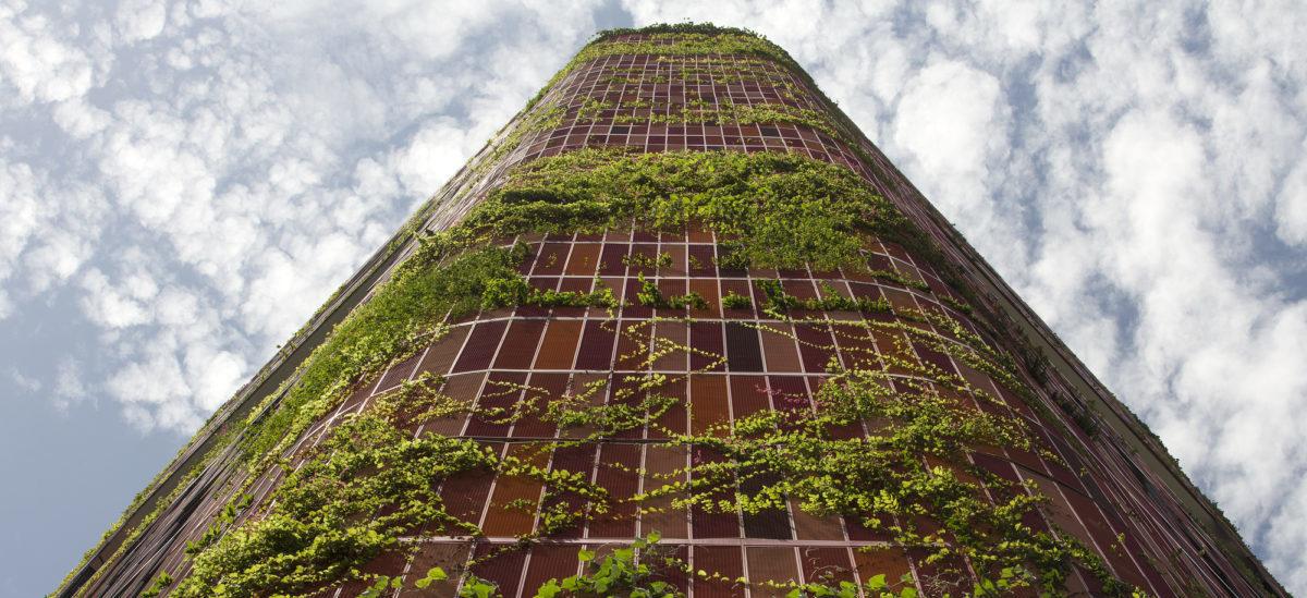 ONZ bierze się za budownictwo ekologiczne