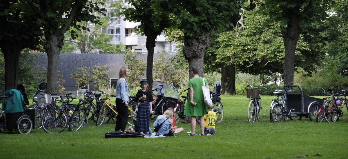 Dzięki duńskim społecznikom w Kopenhadze zasadzonych zostanie 100 tysięcy nowych drzew