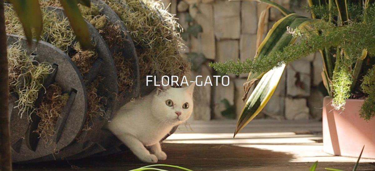 Ekologiczna kryjówka dla bezdomnych kotów