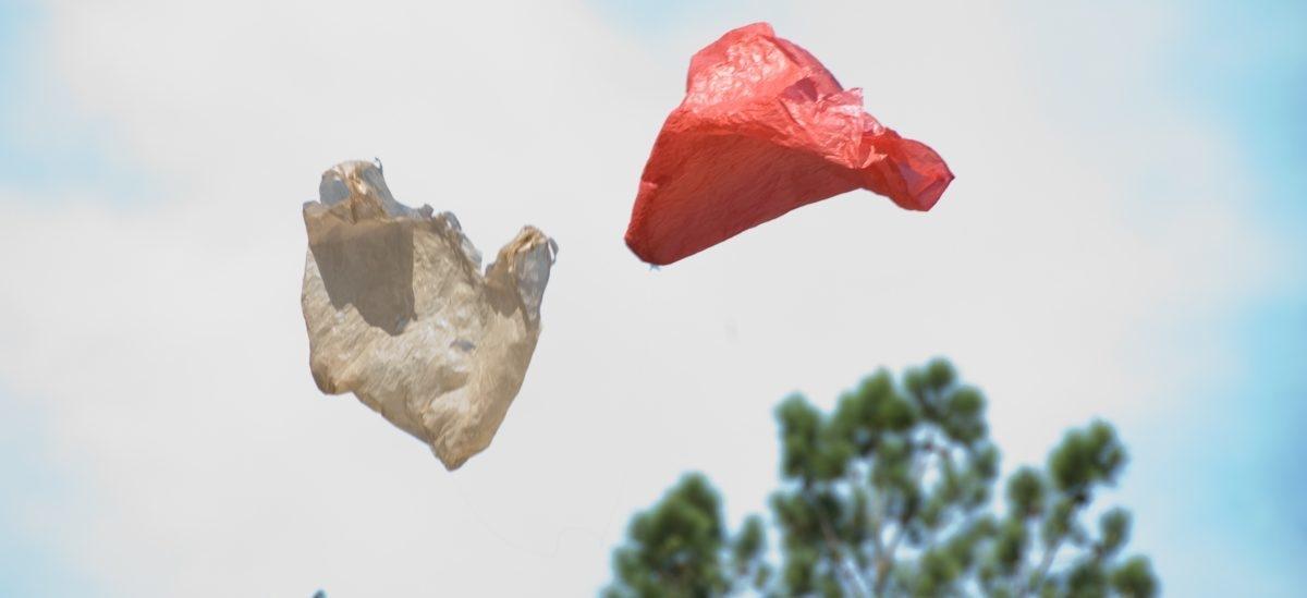 Kolejne kraje wydają wojnę plastikowym torebkom