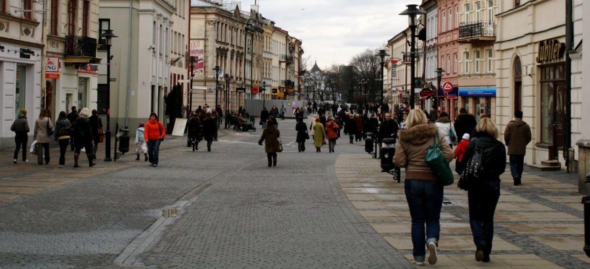 W Lublinie obywatele sami decydowali jak walczyć ze smogiem