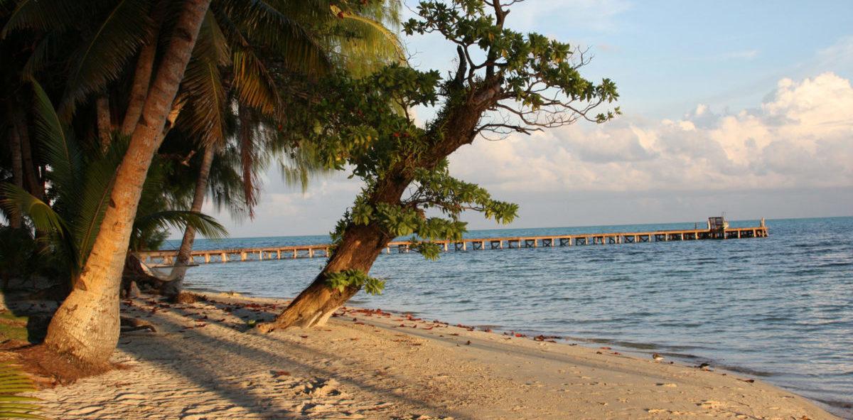 Palau będzie pierwszym państwem na świecie korzystającym tylko z energii odnawialnej