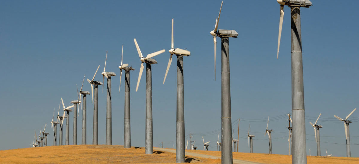 Piąta gospodarka świata będzie ekologiczna