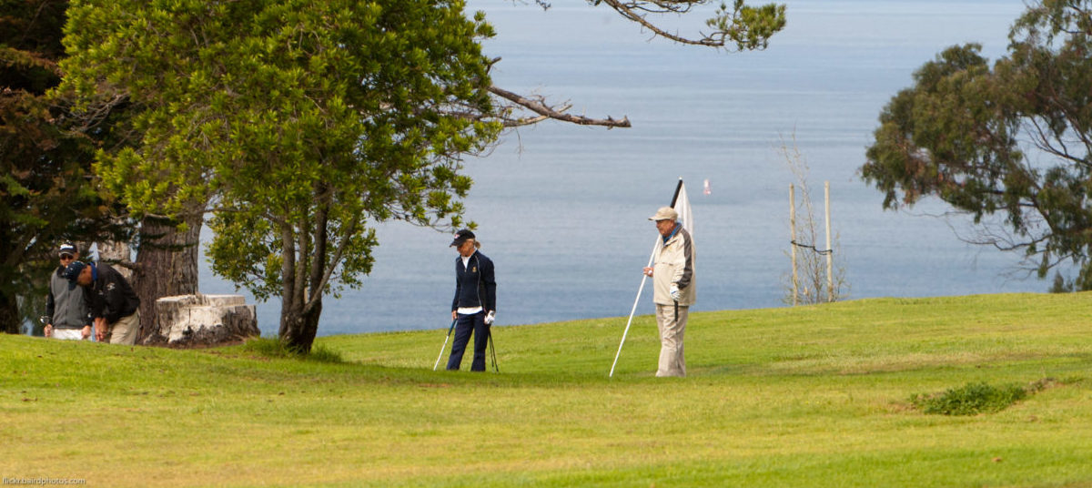 Z pola golfowego łatwo zrobić park