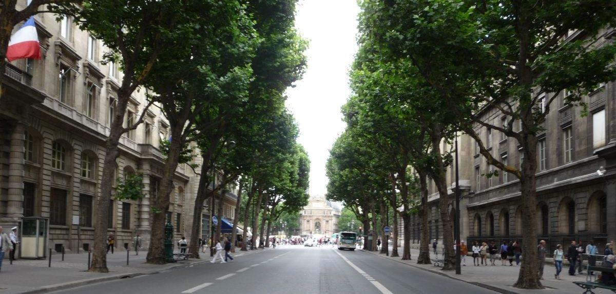 Dlaczego Paryżowi tak łatwo udało się pozbyć samochodów z centrum miasta