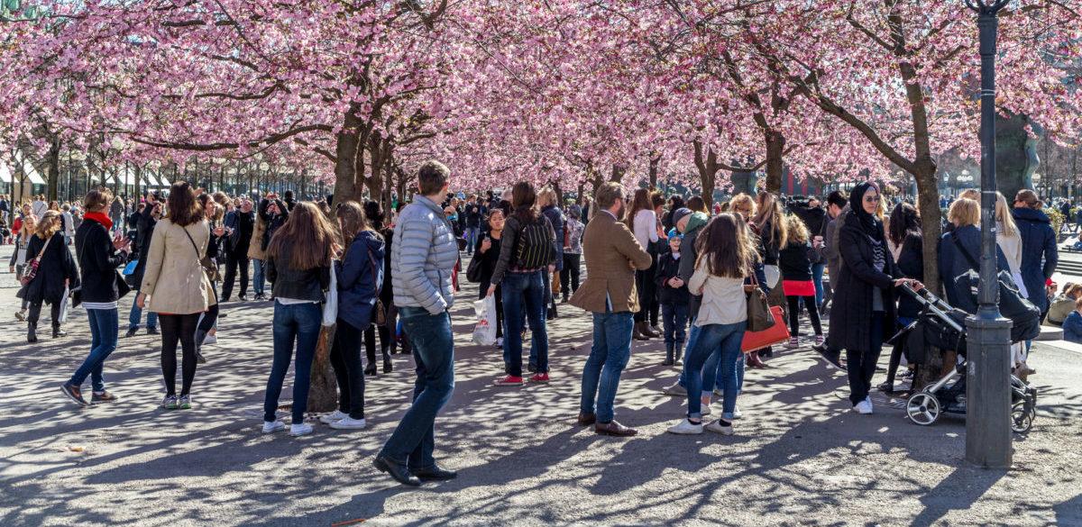 Mieszkańcy Sztokholmu postawili się amerykańskiemu Apple