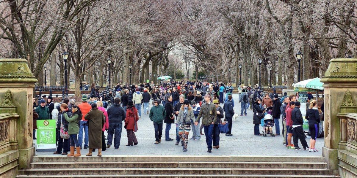 Sadzenie nowych drzew w mieście będzie prostsze