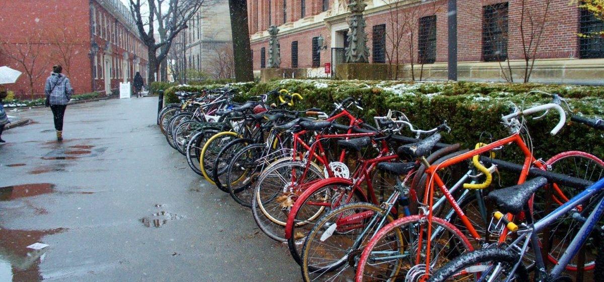 Cambridge zaskoczyło amerykańskich rowerzystów
