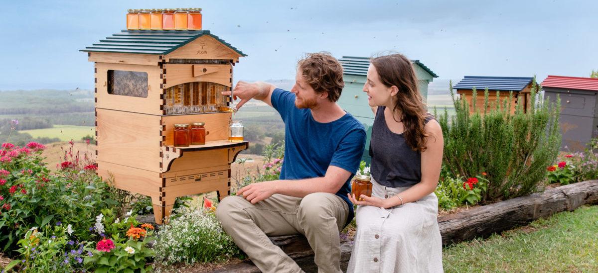 Miodobranie bez stresowania pszczół