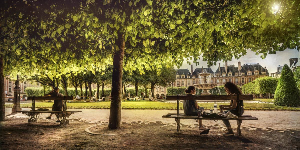 Więcej drzew, nowy priorytet Paryża