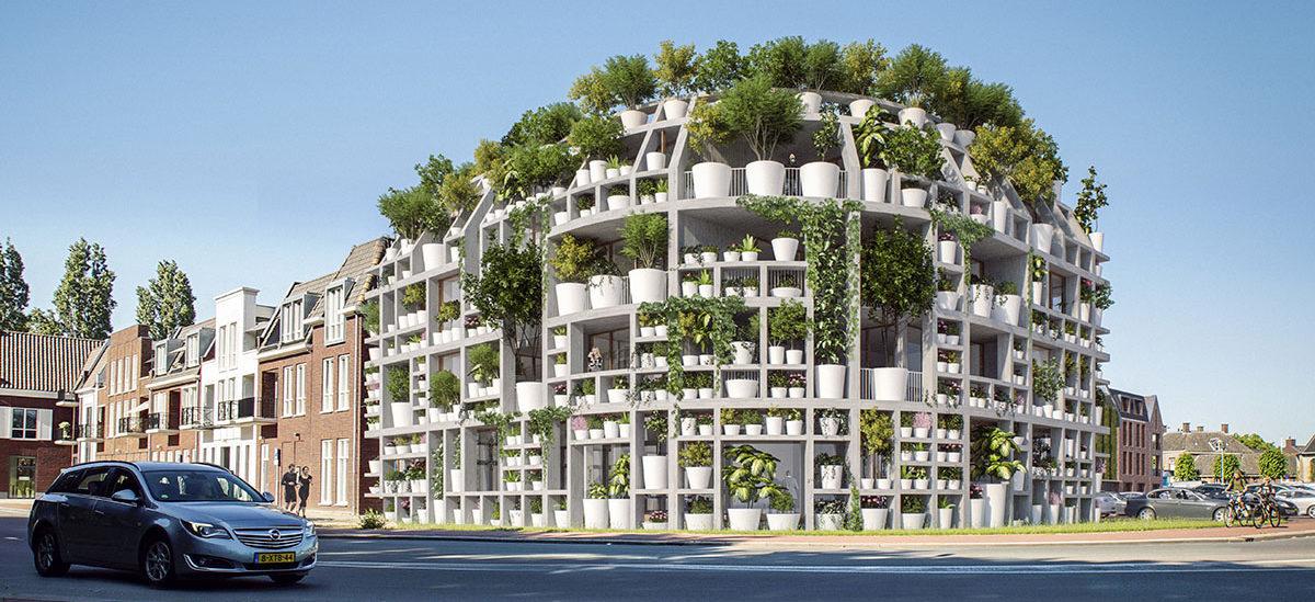 Dom jako oaza miejskiej zieleni