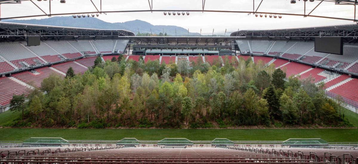 Na stadionie wyrósł las