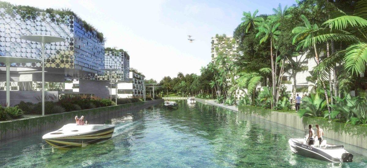Coś nowego: smart forest city