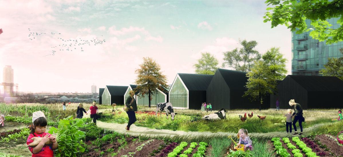 Przedszkole zamienić w małą farmę